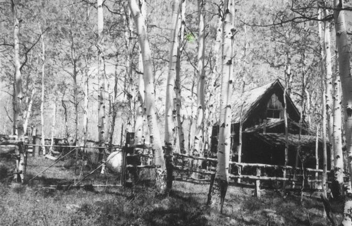 Bruce's Cabin on Cedar Mtn