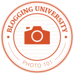 Blogging U Photo 101
